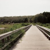 Brookview Studio - Beach Boardwalk