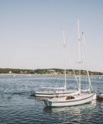 Brookview Studio - Cape Cod Sailboats