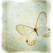 Debra Van Swearingen - Floating Butterfly I