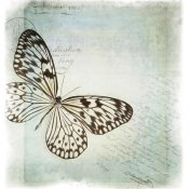 Debra Van Swearingen - Floating Butterfly IV