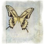 Debra Van Swearingen - Floating Butterfly V
