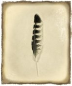 Debra Van Swearingen - Feather IV Vintage