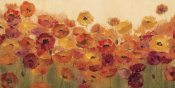 Silvia Vassileva - Summer Poppies