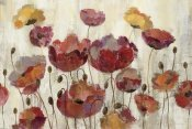 Silvia Vassileva - Poppies in the Rain