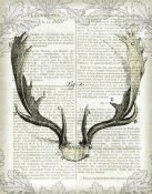 Sue Schlabach - Regal Antlers on Newsprint II