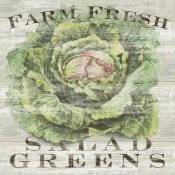 Sue Schlabach - Farm Fresh Greens