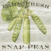 Sue Schlabach - Farm Fresh Peas