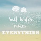 Sue Schlabach - Salt water Cure