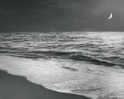 Sue Schlabach - Moonrise Beach Black and White