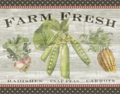 Sue Schlabach - Farm Fresh