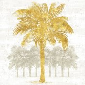 Sue Schlabach - Palm Coast II