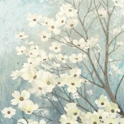 James Wiens - Dogwood Blossoms I