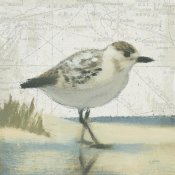 James Wiens - Beach Bird I