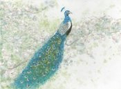 James Wiens - Spring Peacock I