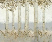 James Wiens - Magnificent Birch Grove