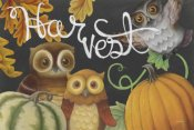 Mary Urban - Harvest Owl IV