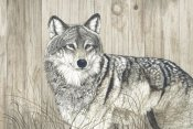 Jacquie Vaux - Wolf in Grass on Barn Board