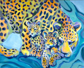 Tummy Rubb Studio - Leopards