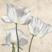 Luca Villa - Poppies in White II