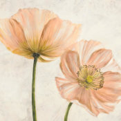 Luca Villa - Poppies in Pink II
