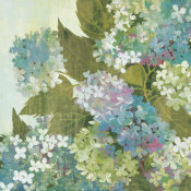 Kathrine Lovell - Grandiflora Bloom