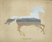 Wild Apple Portfolio - American Southwest Horse Distressed