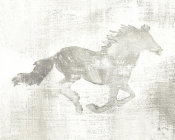 Studio Mousseau - Mustang Study Neutral