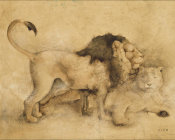 Cheri Blum - Global Lions Light Crop