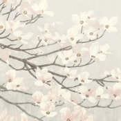 James Wiens - Dogwood Blossoms II Gray
