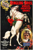 Hollywood Photo Archive - Madam Ada Castello And Jupiter, Poster For Ringling Brothers, Ca -  1899