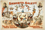 Hollywood Photo Archive - Signorita Galetti Performing Monkeys