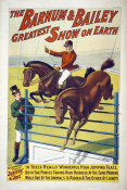 Hollywood Photo Archive - The Barnum & Bailey Greatest Show On Earth--The Celebrated Ponies Jupite & Joie
