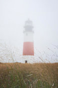 Laura Marshall - Sankaty Head in the Fog
