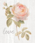 Danhui Nai - Garden Rose on Wood Love