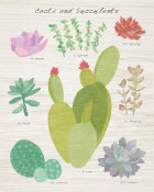 Wild Apple Portfolio - Succulent and Cacti Chart III on Wood
