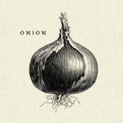 Studio Mousseau - Linen Vegetable BW Sketch Onion