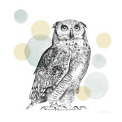 Lamai McCartan - Sketchbook Lodge Owl Neutral