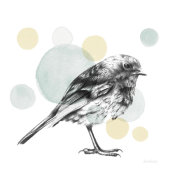 Lamai McCartan - Sketchbook Lodge Bird Neutral