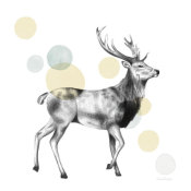 Lamai McCartan - Sketchbook Lodge Stag Neutral
