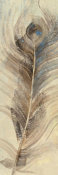 Albena Hristova - Feather Study Single Feather