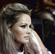 Hollywood Photo Archive - Ursula Andress
