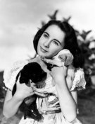 Hollywood Photo Archive - Elizabeth Taylor with puppies