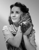 Hollywood Photo Archive - Elizabeth Taylor with kitten