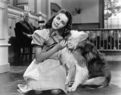 Hollywood Photo Archive - Elizabeth Taylor wih Lassie