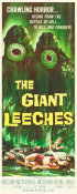 Hollywood Photo Archive - The Giant Leeches