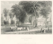 Timothy Cole - Yale College (New Haven), 1838