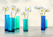 Cynthia Ann - Poppies in crystal vases (Aqua palette)