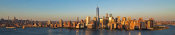 Richard Berenholtz - Manhattan and One WTC