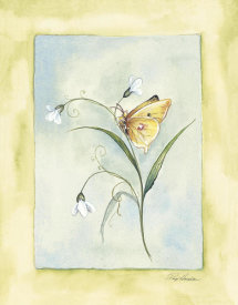 Paige Houghton - Yellow Butterfly With White Flowers