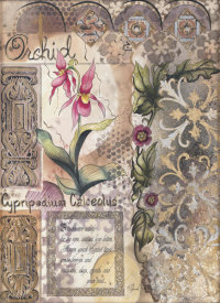 Chrishawn Studios - Lynch - Orchid Symmetry
